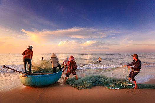 استعمالات وفوائد السمك الطبية Fish