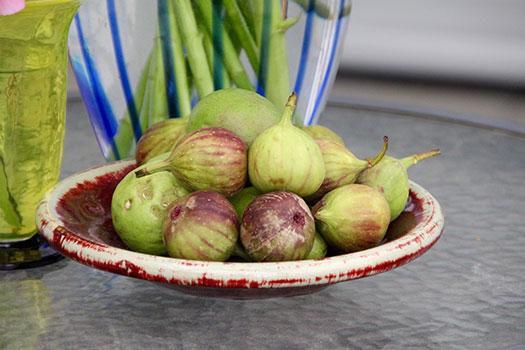 فوائد التين واستعمالاته الطبية Common fig