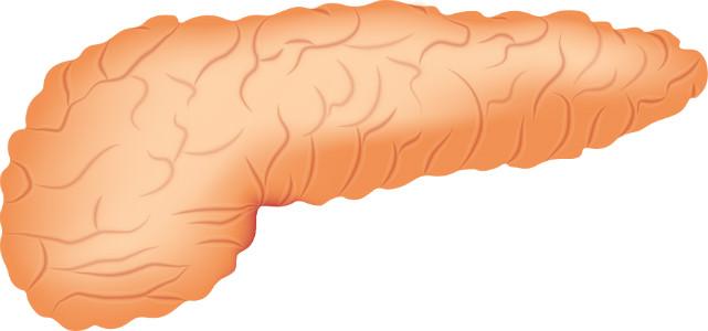 سرطان البنكرياس Pancreatic cancer | الأعراض وخيارات العلاج