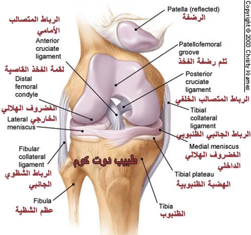 ألم الركبة | الأسباب، العلاج المنزلي، الوقاية Knee pain