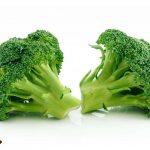 البروكلي القرنبيط الأخضر Broccoli