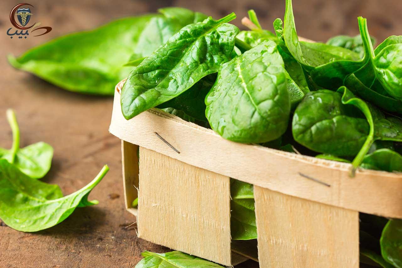 السبانخ Spinach