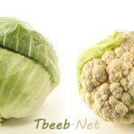 الملفوف، الكرنب، الزهرة، القرنبيط Cabbage Cauliflower