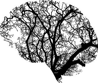 كثرة النسيان | تدريب المخ على تحسين الذاكرة