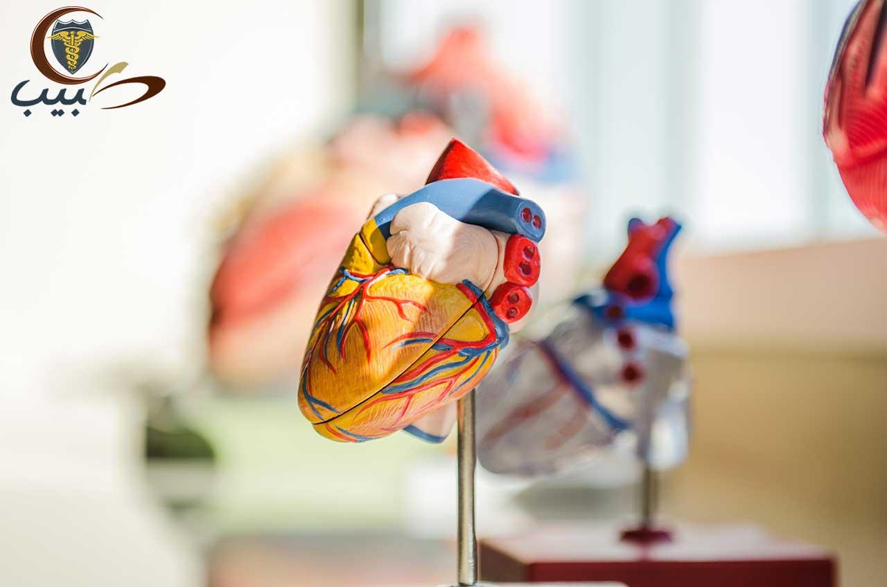 تحاليل القلب المخبرية