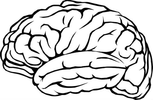 هل يمكن أن تثق بدماغك كمصدر دائم للمعلومات الموثوقة؟