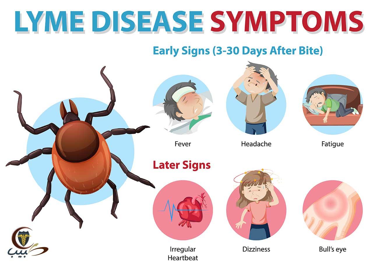 مرض لايم أثناء الحمل Lyme