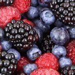 أفضل مصادر الفواكه Fruits