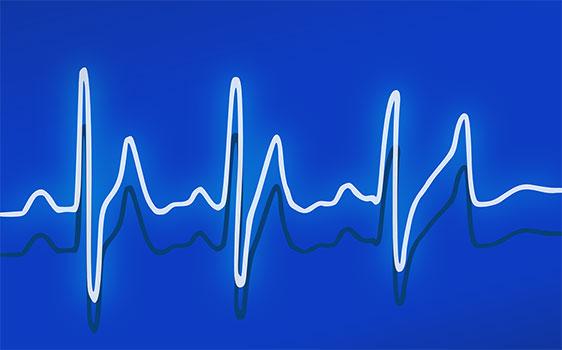 هل الدهون هي سبب أمراض القلب والسكتة