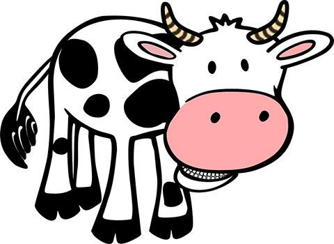 فطام الطفل في الشهر السادس على حليب أو لبن الأبقار