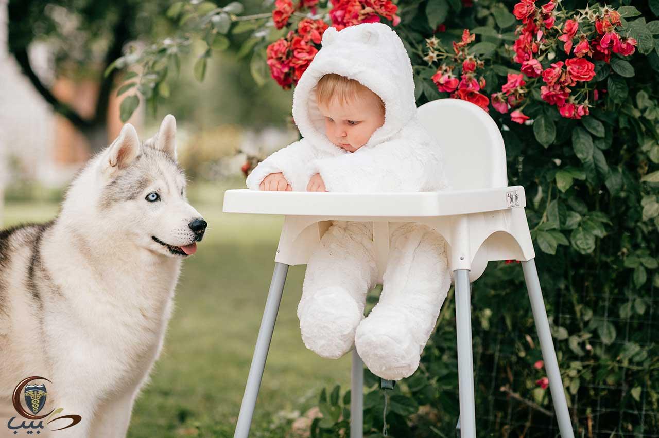 وقاية الطفل من عضة الكلب