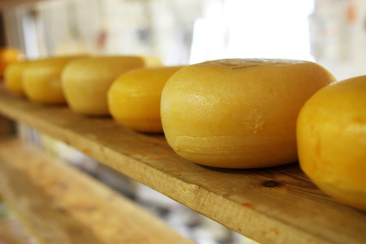 السعرات الحرارية في الجبن أكثر من أي مشروب غازي وملح أكثر من رقائق البطاطس