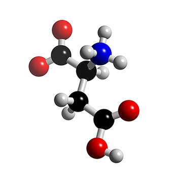 Amino Acids and Proteins structure تركيب الأحماض الأمينية والبروتينات